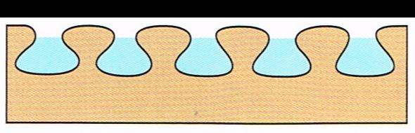 Sistemi tradizionalicon prodotti a base oleosa